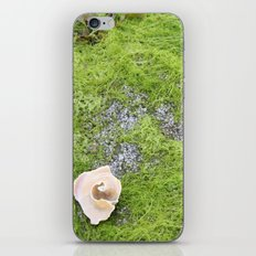 At the Surface iPhone & iPod Skin
