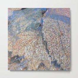 leaves under ice Metal Print