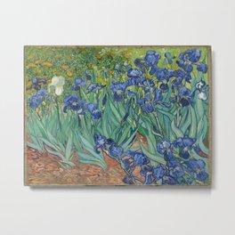 Vincent van Gogh - Irises Metal Print