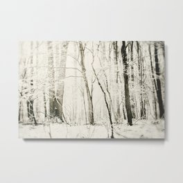 Hundred Acre Woods Metal Print