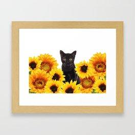Sunflower Black Cat Framed Art Print
