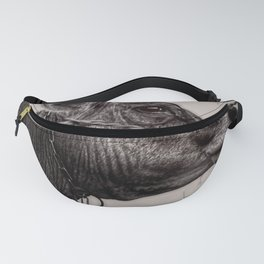 Flies and Barb Wire Fanny Pack