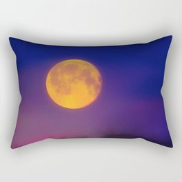 Winter Moon Rectangular Pillow