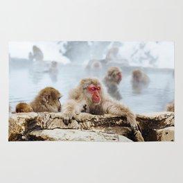 Ice Monkey Rug