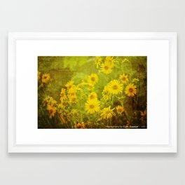 Flowers of the Field Framed Art Print