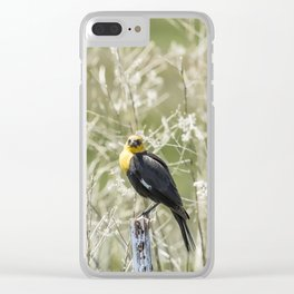Yellow-headed Blackbird, No. 3 Clear iPhone Case