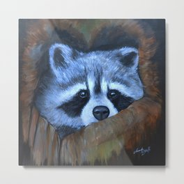 Curious Raccoon in Tree Hollow Metal Print