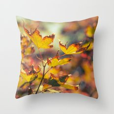 Autumn Tease Throw Pillow
