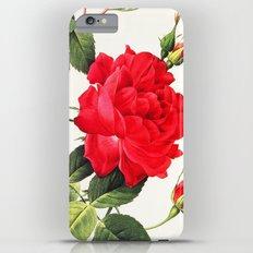 IX. Vintage Flowers Botanical Print by Pierre-Joseph Redouté - Red Rose iPhone 6 Plus Slim Case