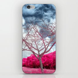 Dry branches iPhone Skin