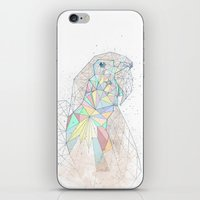 parrot iPhone & iPod Skins featuring parrot by Narek Gyulumyan