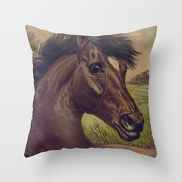 Vintage Horse Illustration (1893) Throw Pillow