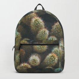 Botanical Gardens Cactus #596 Backpack