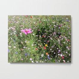 Wildflower meadow in France Metal Print