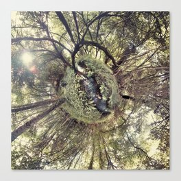 ROUND FOREST Canvas Print