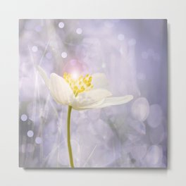 White Flower In The Forest Enchantments - Bokeh Background #decor #buyart #society6 Metal Print