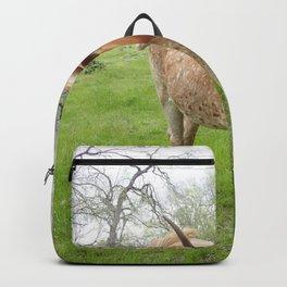 Longhorn Cow Backpack