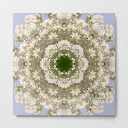 White Lilac 2 Metal Print