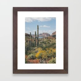 Arizona Spring Framed Art Print