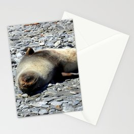 Mother Fur Seal and Pup Stationery Cards