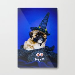 Fluffy Shih Tzu Puppy Wearing a Witch Hat Poses with One Paw on a Spider Basket for Halloween Metal Print