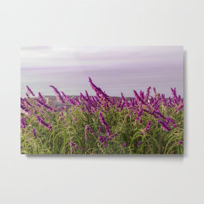 Lavender Wonderland Metal Print