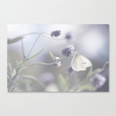 Lavender loving butterfly Canvas Print