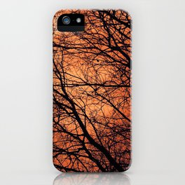 The Enchanted Forest 2 iPhone Case