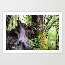 The Tree That Grew from Me Art Print