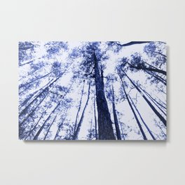 Fading into blue Metal Print