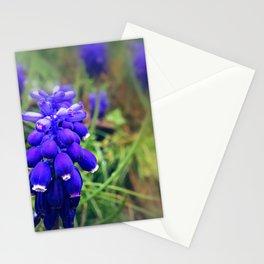 Raindrop Kisses Stationery Cards