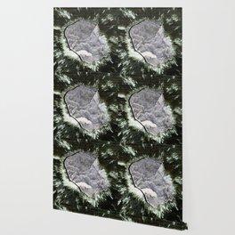 Smart Snow Stone II Wallpaper
