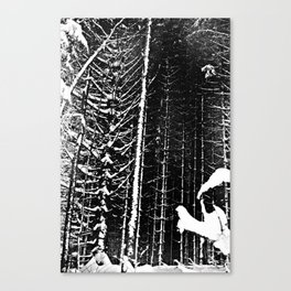 Spines Canvas Print