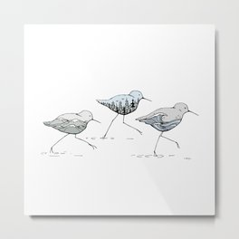""" Shorebirds "" Metal Print"