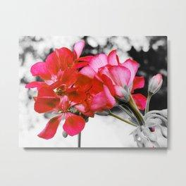 Flowers : Pop of Color Metal Print