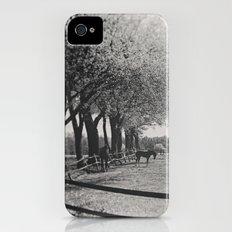 Horses Slim Case iPhone (4, 4s)