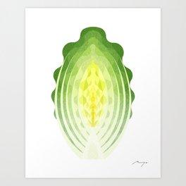 Romaine lettuce Art Print