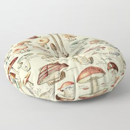 Trippy Vintage Mushroom Chart // Champignons by Adolphe Millot XL 19th Century Science Artwork Floor Pillow