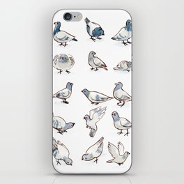 Pigeon Collection iPhone Skin