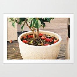 Flower pot! Art Print