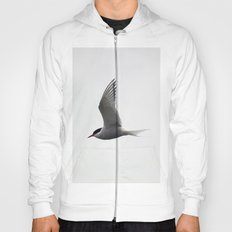 Artic Tern Hoody