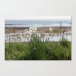 Flowers At The Seashore Canvas Print