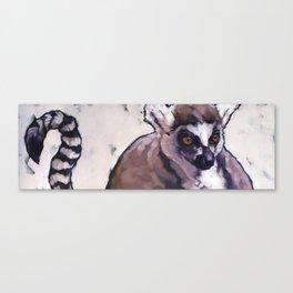 Ghost of Madagscar Canvas Print