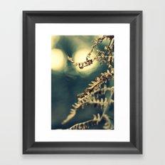 Winter Fern Framed Art Print