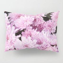 A Sea of Light Pink Chrysanthemums #1 #floral #art #Society6 Pillow Sham
