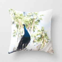 Fine Art Peacock Wildlife Animal Southern California Colored Print Throw Pillow