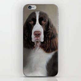 Waiting Patiently - English Springer Spaniel iPhone Skin