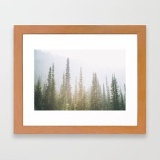 Forest XXVII Framed Art Print