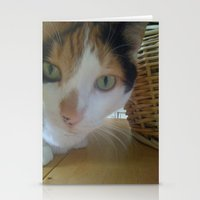 ginger Stationery Cards featuring Ginger by A.S.M Designs