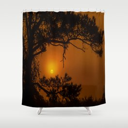 Enchanted Morning Shower Curtain